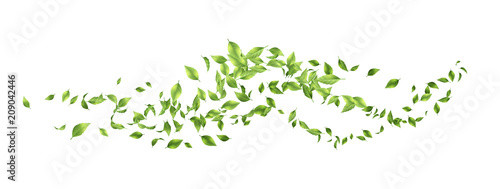 Obraz Green Flying Leaves - fototapety do salonu