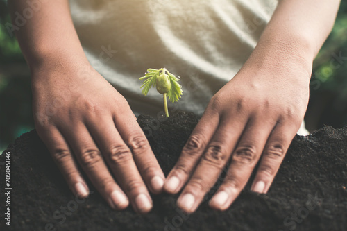 Valokuva  Human hand planting little green sprout , concept save the world.