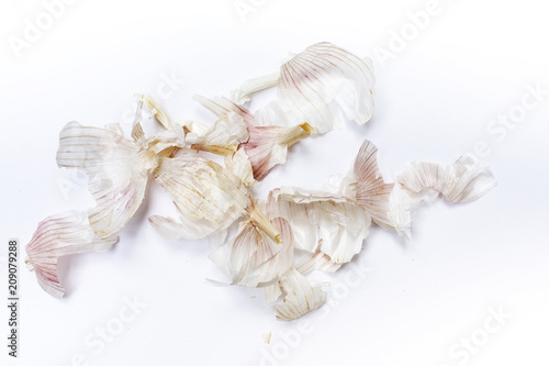 Garlic bumpy ( Allium sativum ) peeled  isolated on white background, Pattern concept