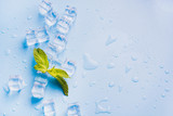 Ice with mint isolated on blue.