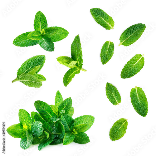 Poster Aromatische Fresh mint leaves collection isolated on white background, top view. Close up of peppermint.