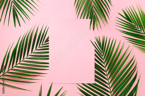 Ingelijste posters Palm boom Tropical palm leaves on pastel pink background with paper card note. Minimal summer concept. Creative layout. Top view, flat lay. Green leaf on punchy pastel paper