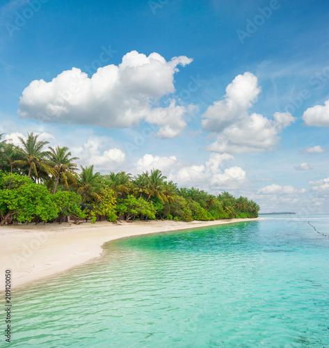 Foto op Canvas Asia land Tropical island beach Palm trees Blue sky
