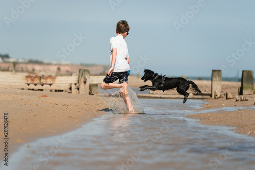 Summer holiday fun at the beach for a boy and his puppy