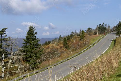 Fotografie, Obraz  Scenic Road Leading Up to Mount Mitchell Sate Park, North Carolina