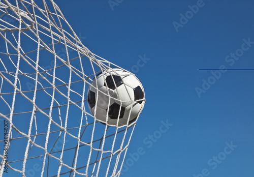 Fototapety, obrazy: Ball im Netz