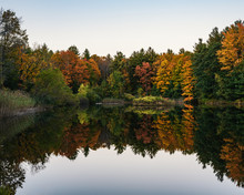 Colorful Autumn Trees Reflected In Pond