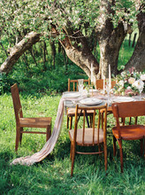 Table Set In Summer Garden