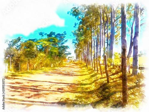 Fotografia natury
