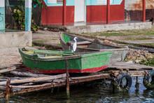 Snowy Egret (Egretta Thula) On A Small Boat Near Castillo De Jagua Village, Cuba