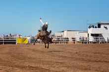 Cowboy Bull Riding At Country ...