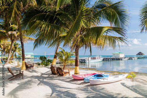 Palms and beach at Caye Caulker island, Belize Canvas Print