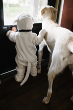 Toddler Standing With Dog Wear...