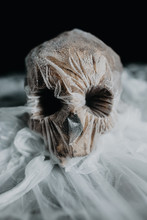 Human Skull Covered By Plastic