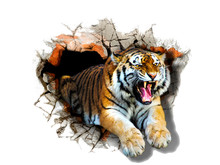 Sticker Tiger Jumps Out Of The...
