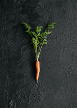Carrot On Black