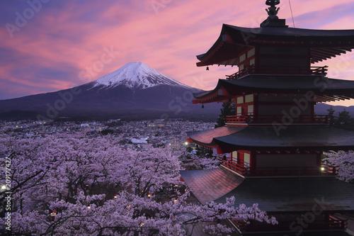 新倉山浅間公園より望む桜と五重塔と富士山の夕景