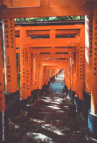 Foto op Canvas Asia land Fushimi Inari Taisha torii, Kyoto, Japan