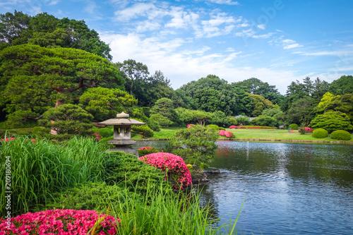 Foto op Canvas Asia land Shinjuku Gyoen garden, Tokyo, Japan