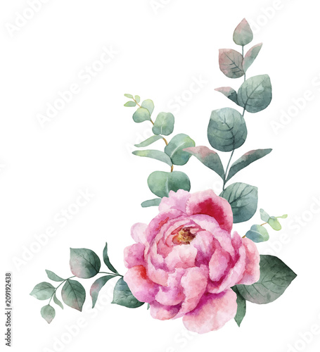 Fotomural Watercolor vector wreath with green eucalyptus leaves, peony flowers and branches