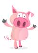 Happy cartoon pig illustration. Vector
