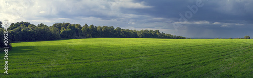 Foto-Vinylboden - Rural panoramic landscape with sun-lit fielda field, before a thunder-storm. (von Rustic)