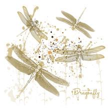 Vector Illustration. Dragonflies On Splash Background. Gold Color Effect.