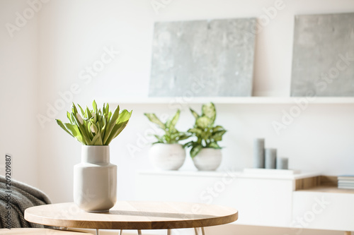 Fotografía Fresh flowers in white vase placed on small table in bright room interior with p