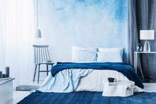 Navy Blue Carpet In Minimal Be...