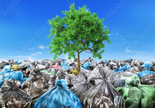 Fototapety, obrazy: Rebirth concept. A tree grows from a pile of garbage. Recycle.