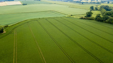 Aerial Drone View Of Neatly Or...