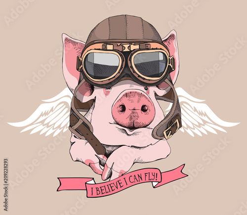 Canvas Print Funny Pig in a retro leather aviator helmet and with a wings on a beige background