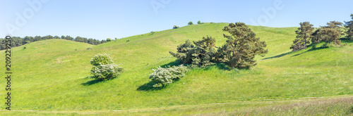 Slika na platnu Hügelige Weidelandschaft