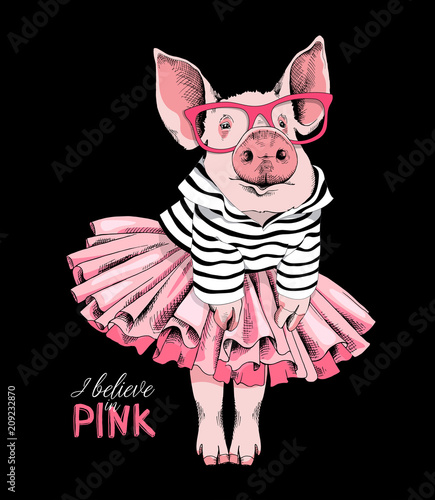 Plakaty do antyram, ramek lub samoprzylepne pig-posing-like-a-superstar-in-a-striped-cardigan-in-a-pink-tutu-skirt-and-with-a-glasses-vector-illustration