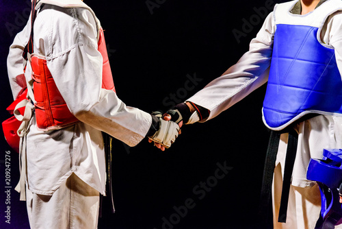 Leinwand Poster Two Taekwondo are handshake