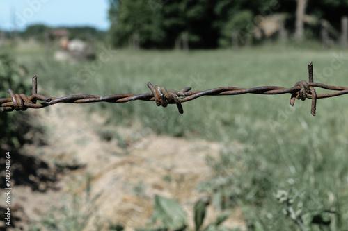 Spoed Foto op Canvas Bruggen Rusty Barbed Wire Fence in Green Meadow Background in the Farm