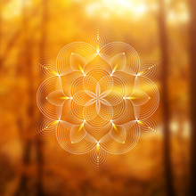 Template Of Banner For Web And Social Media, Square Format; Spiritual Sacred Geometry; Yantra, Chakra Or Lotus On Psychedelic Blurred Background; Yoga, Meditation And Relax.