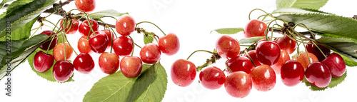 Fototapeta fresh red cherries on a white background obraz