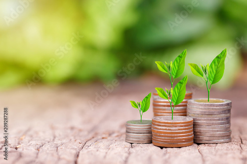 Photo  Tree growing on coins stack with sunray for saving money concept