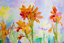 Watercolor Painting Orange Color Of Canna Lily.