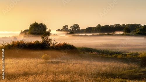 Poranne mgły w Dolinie Narwi