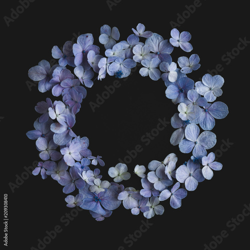 Deurstickers Hydrangea hydrangea Flower Purple In black background