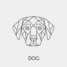 Abstract Polygonal Head Of A Dog. Geometric Linear Animal. Vector Illustration.