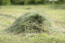Heap Of Unwrapped Hay Bales Close-up