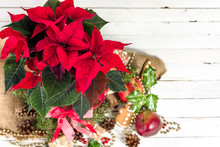 Christmas Decoration With Red Poinsettia Flower, Traditional Decor And Ornaments On Wooden Background