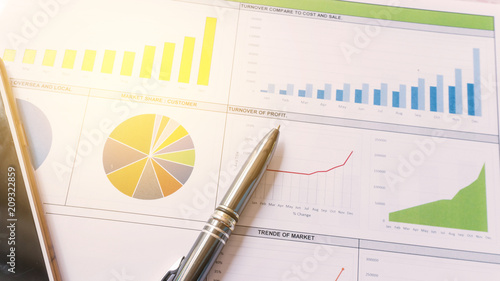 Fotografie, Obraz  Business report statement for analysis and review
