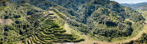 Garden Poster Rice fields Aerial drone panorama of spectacular towering rice terraces