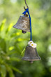 Two small metallic oriental bells hanging in the garden, sunny day, greenery
