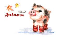 Autumn Card.  Little Cute Funn...