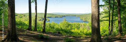 Fotobehang Bomen Penacook Lake